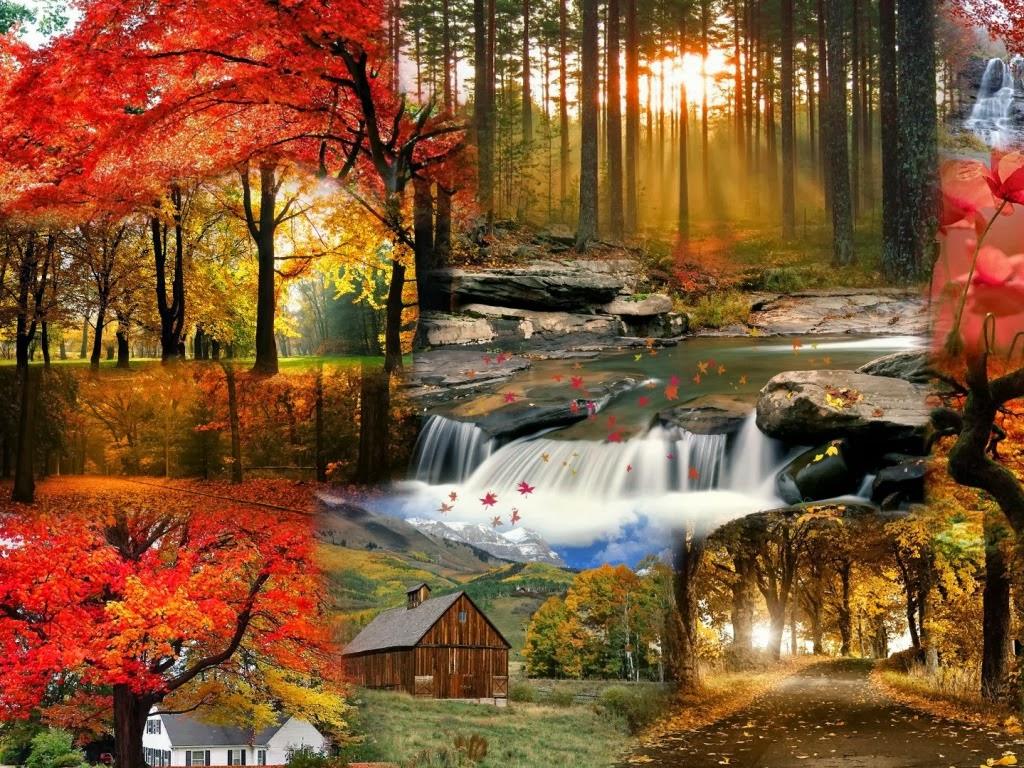 Fondos de escritorio paisajes de otono