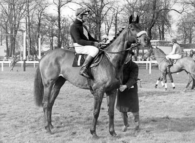 Grand National 1974 Winner: Red Rum Does the Double
