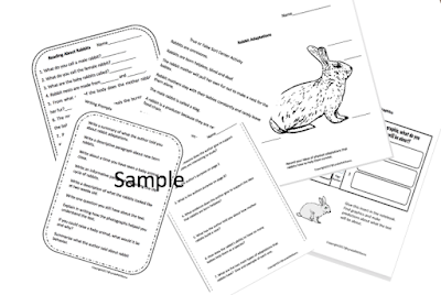 Teaching Science With Lynda: Rabbit Life Cycle Close
