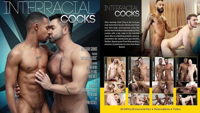 Interracial Cocks | 2017