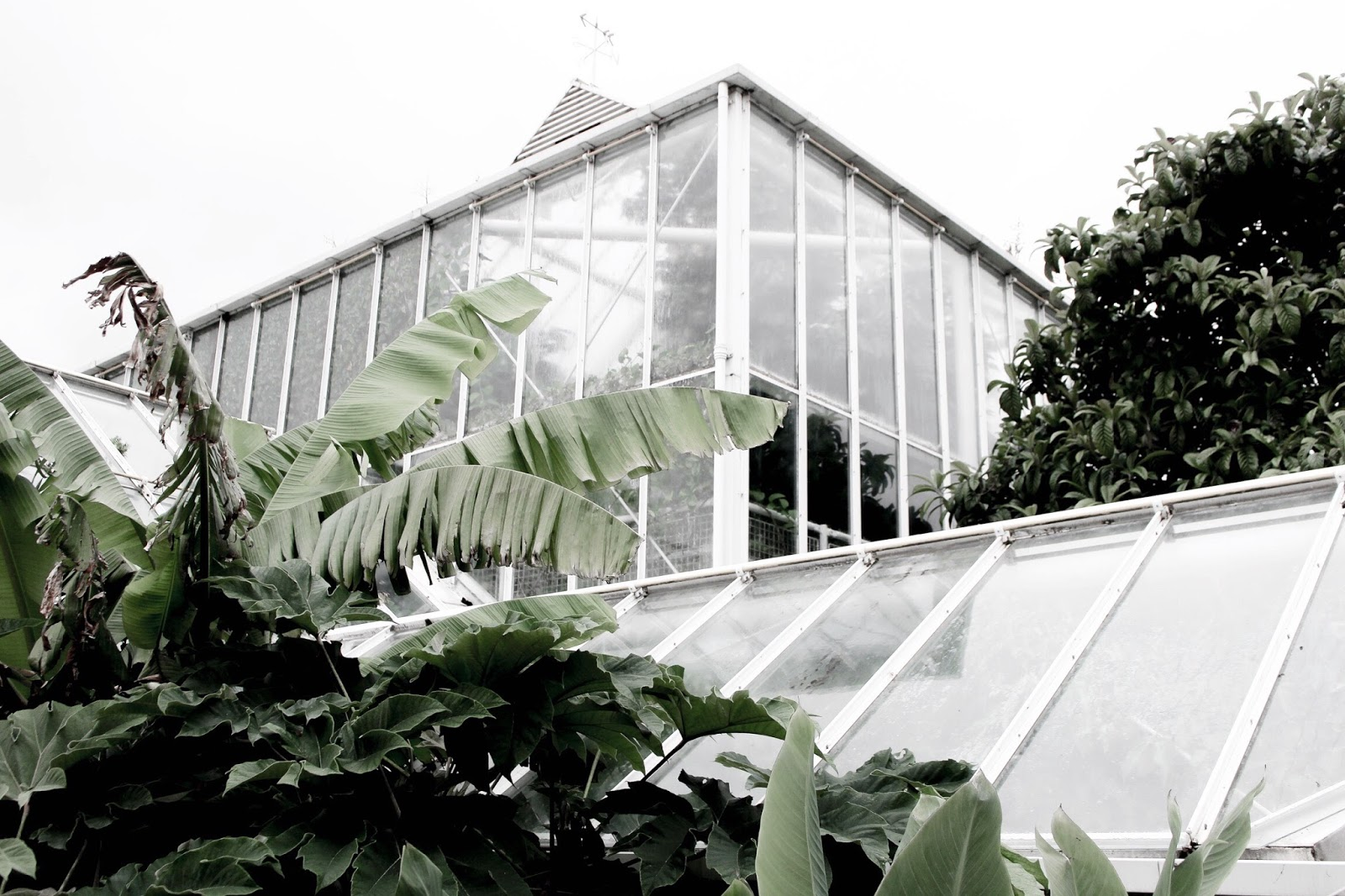 Travel Blog List of the Best Glasshouses in the UK