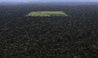 An aerial view shows a tract of Amazon rain forest that has been cleared by loggers and farmers for agriculture near the city of Santarem, Para State, April 20, 2013. (Credit: Nacho Doce/Reuters) Read more at
