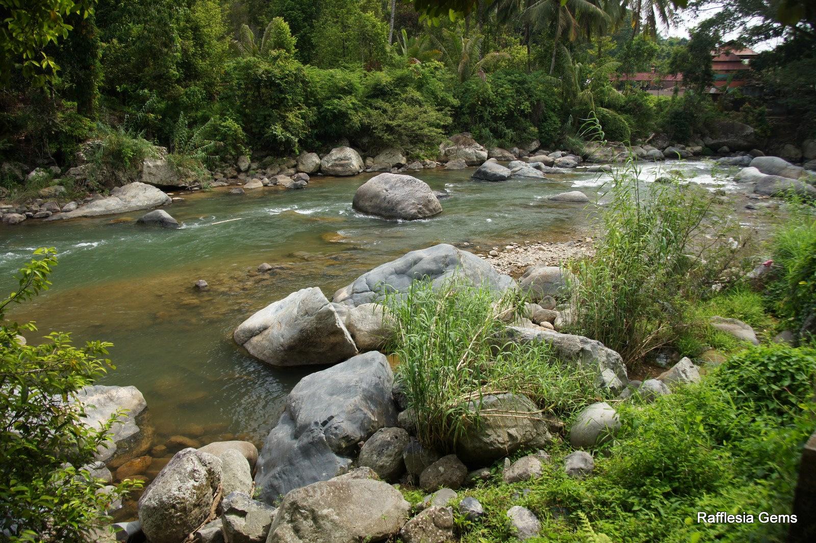 Magical Sumatra and Java: Batu Sungai Dareh (Idocrase) and ...