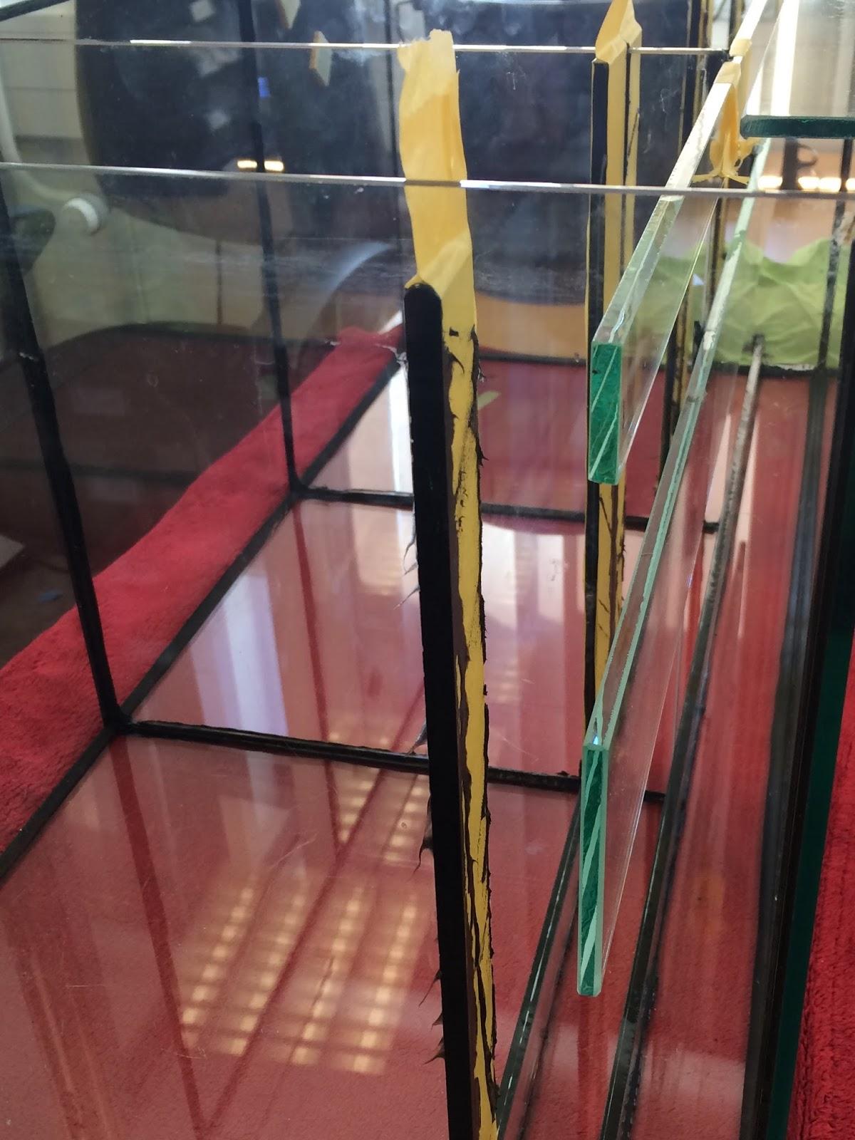 silikon von glas entfernen aquarium – zuhause image ideas