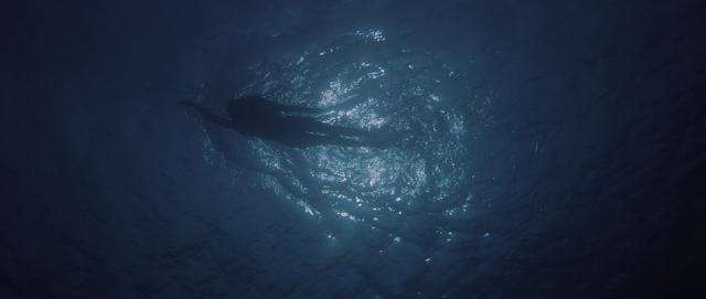 Premières images de Les Dents de la mer, réalisé par Steven Spielberg (1975)