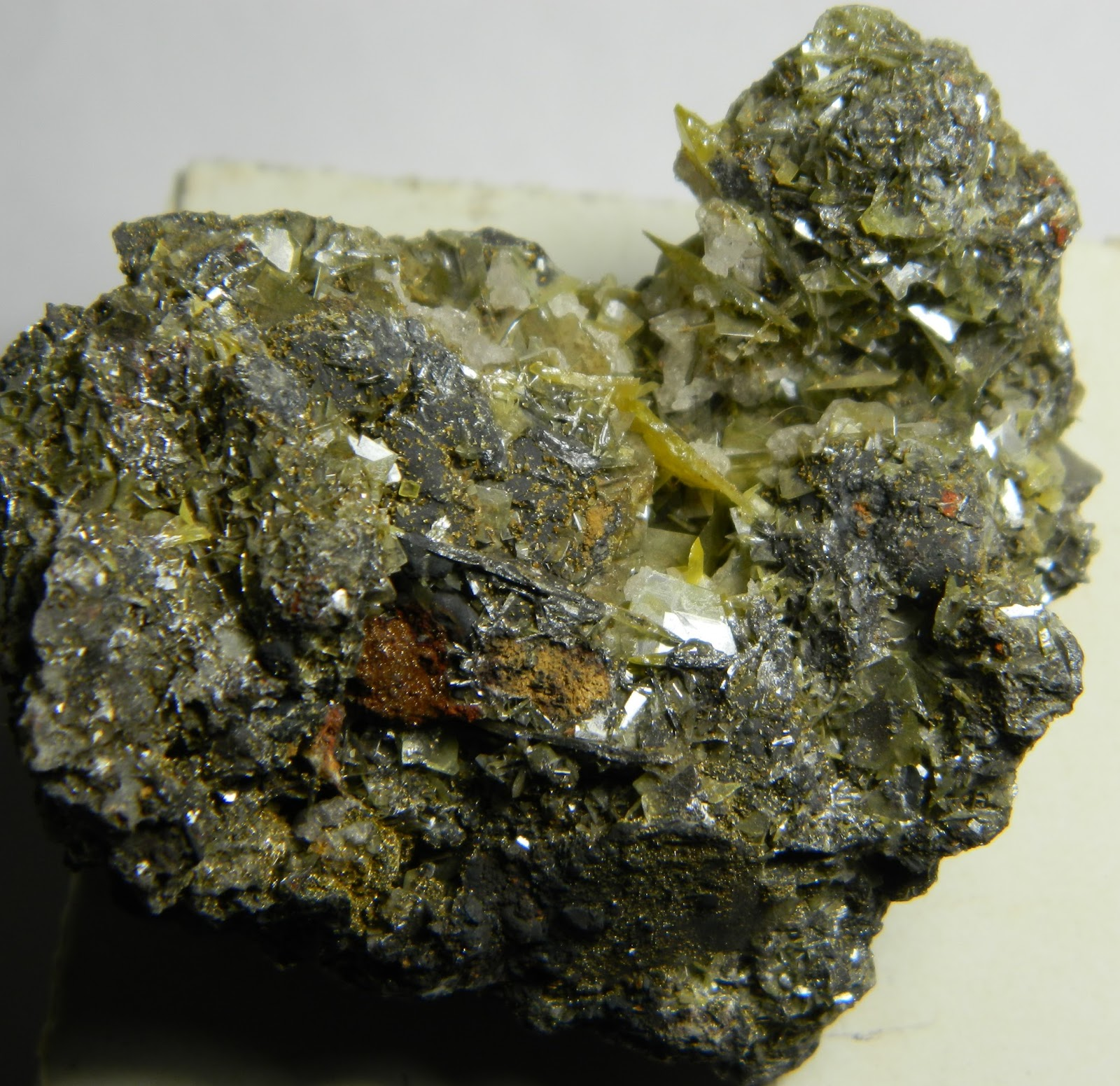 CSMS GEOLOGY POST: WULFENITE: THE BLACK SHEEP VARIETY