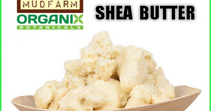 Toronto Bulk Raw Yellow/Ivory Shea Butter Wholesaler - The Ultimate Natural Beauty Product