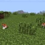 InvincibleHamster  Minecraft Hile Invincible Hamster Mod 1.7.2