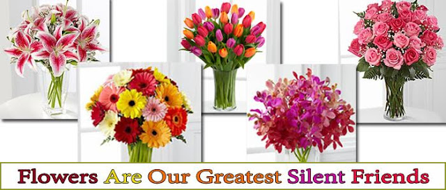 Top 5 Flowers Make Your Loved Ones Day More Special