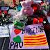 El terror en Barcelona: Matan al asesino en Cambrils / 14 muertos