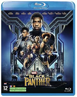 DOWNLOAD Black Panther (2018) BluRay 720p 1 3GB [Hindi - English