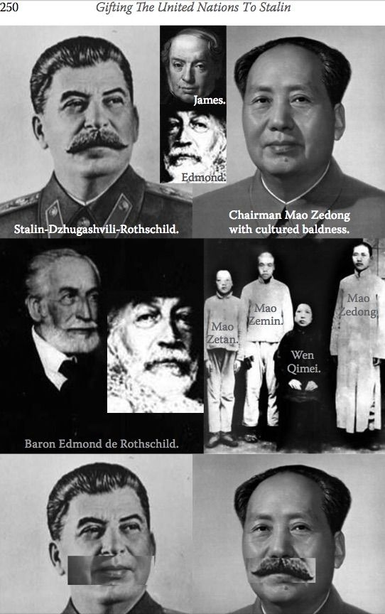 the Hitler Stalin Mao Rothshield Family Tree