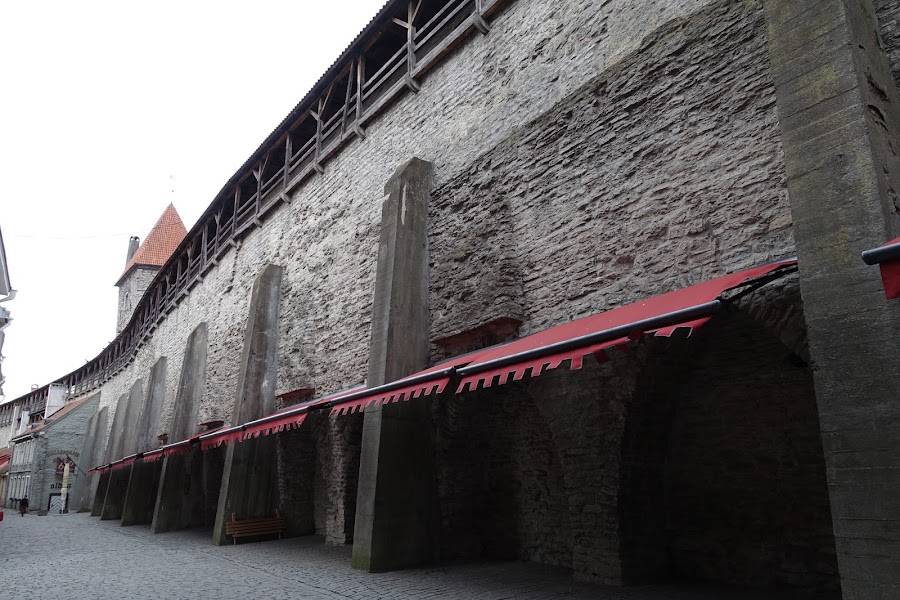セーターの壁
