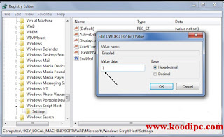 How to fix windows script host access windows 7 data recovery next double click enabled and replace the number 0 with number 1 in the value data ccuart Image collections