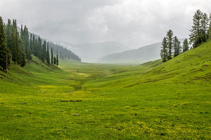 Huge meadows of Bungus and the rains