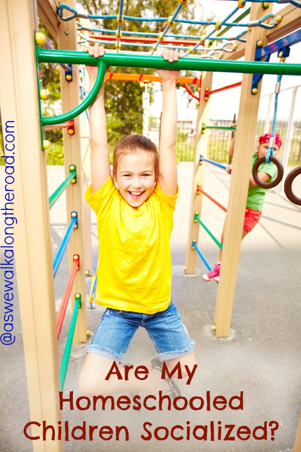 Homeschool and socialization