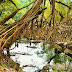 North East India through my eyes - Meghalaya
