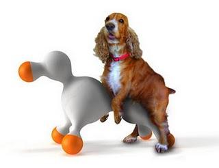 Vet Pet Dicas Dra Ana Quevedo Cio Dos Cães Castração