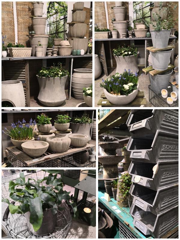 Collage Formland Graue Gartendeko mi Frühblühern