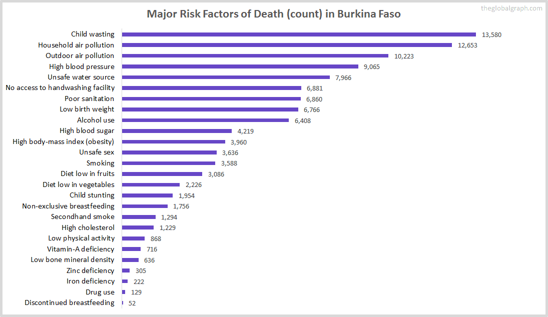 Major Cause of Deaths in Burkina Faso (and it's count)