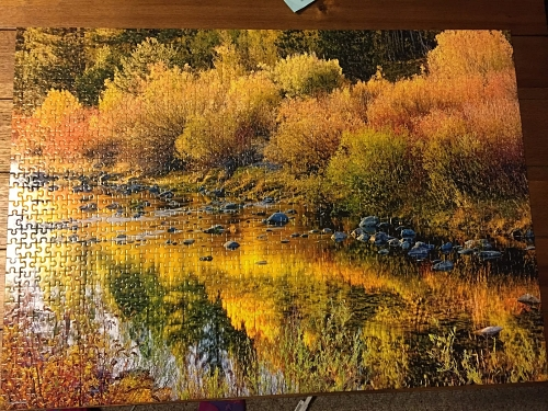 1,000 piece puzzle after