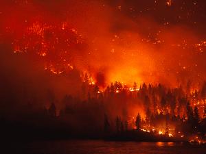 ¿Está el cambio climático avivando los mega fuegos?