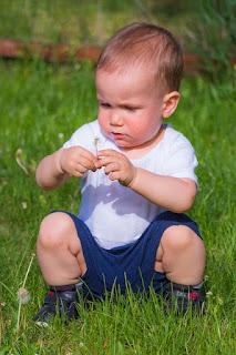 Junge spielt im Gras mit einer Pusteblume