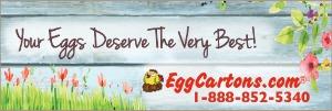 photo eggcartons-com-spring_zpsdcss5ofj.jpg