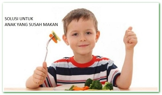 Tips Jitu Mengatasi Anak Susah Makan