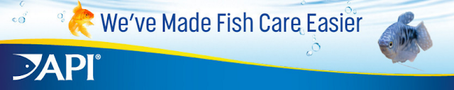API Fishcare makes fish care easier #APIfish