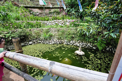Over looking small pond under the bamboo bridge inside Tam-awan Village.