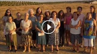 https://www.facebook.com/absolutoportugal/videos/10152575697358935/