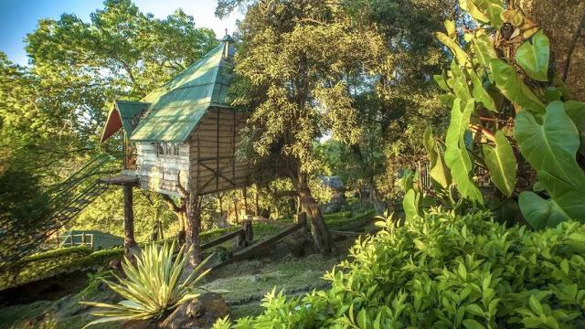 Great Escape Resort Munnar best price