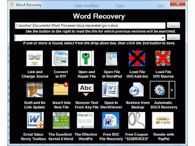 S2 Service Word Recovery Tools main interface