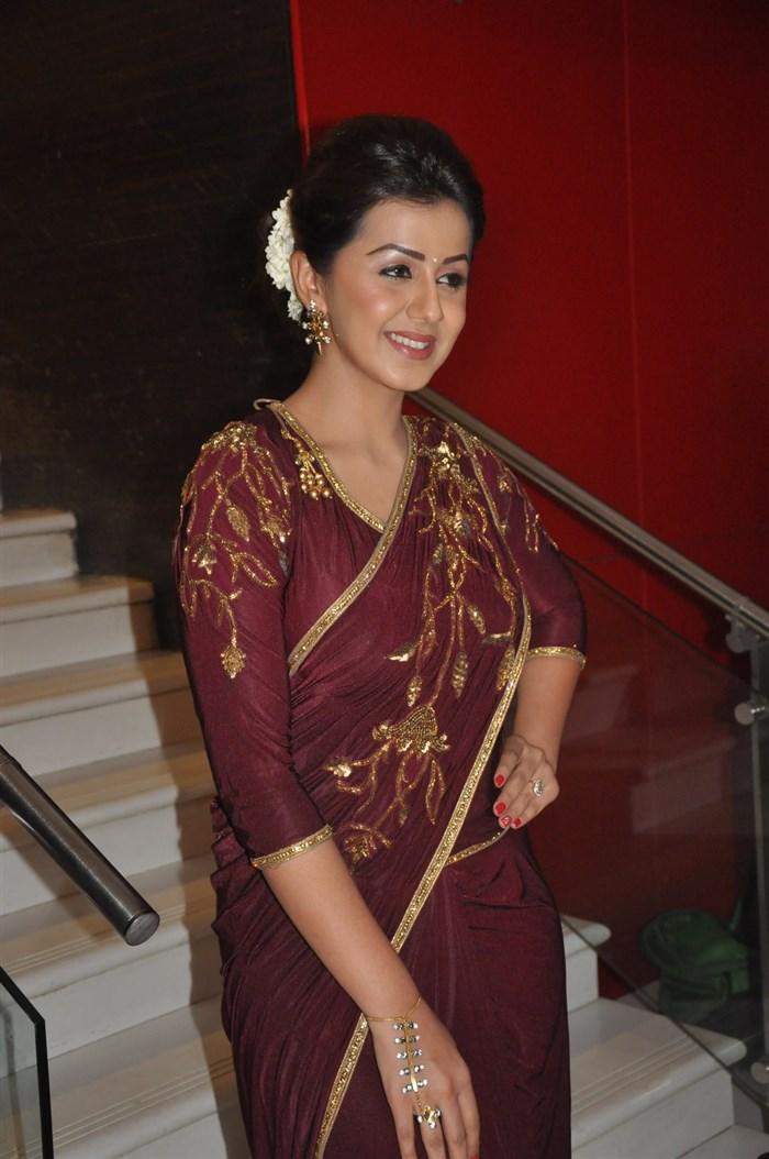 Nikki Galrani Stills at Marakathamani Audio Launch In Saree