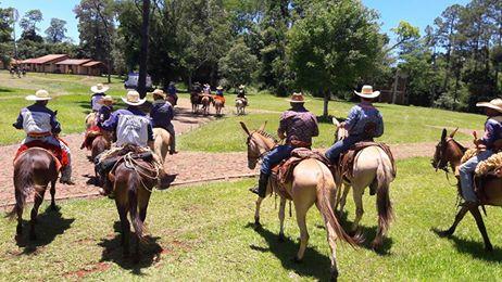 2º Encontro de Muladeiros do Estado do Paraná foi realizado em Campo Mourão