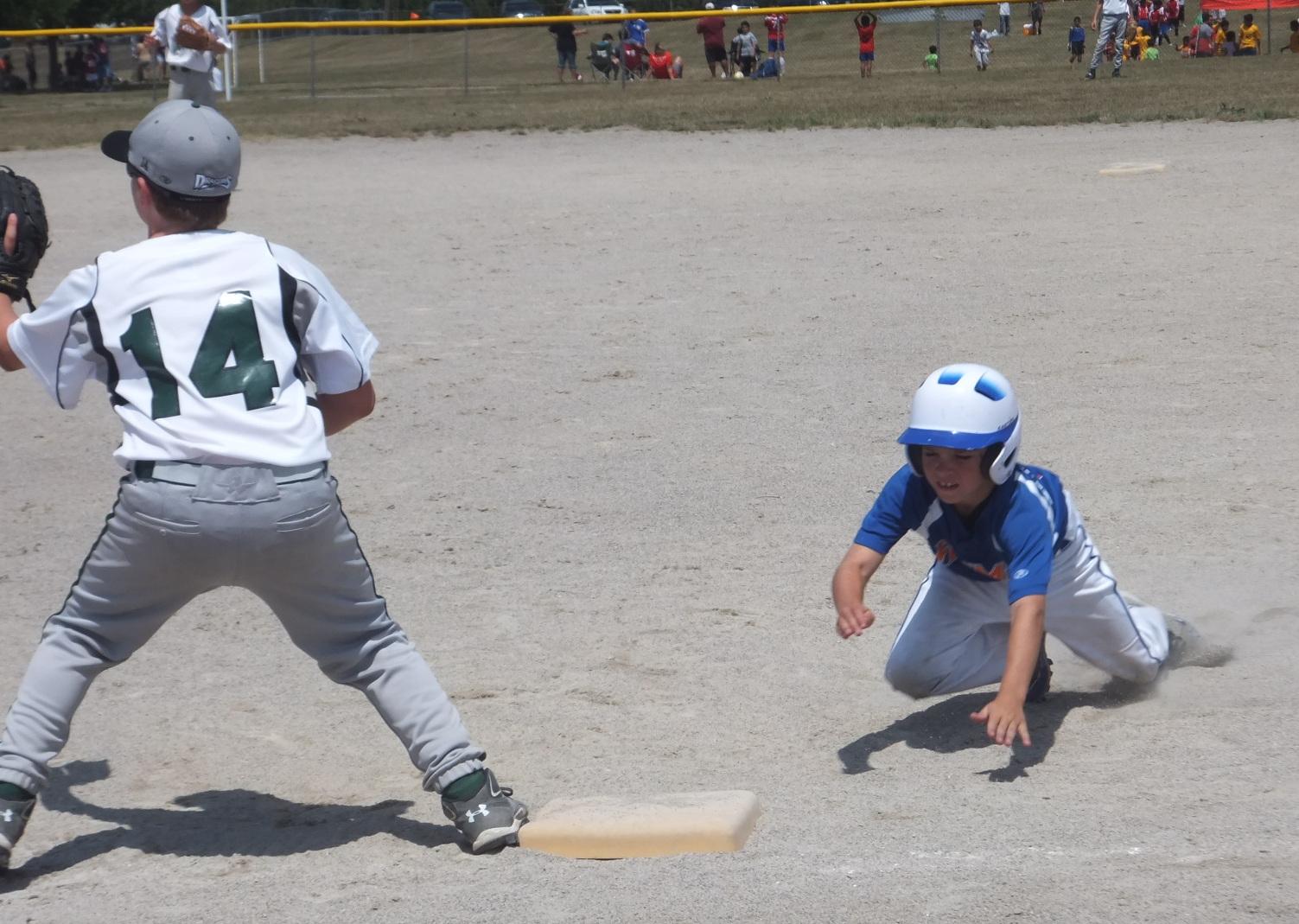Alpine Township Website Companion: Gonzo Baseball and