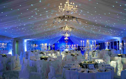 royal blue and gold wedding party ideas