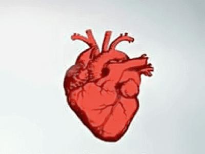 Gambar 4 Cara Menjaga Jantung Tetap Sehat Dan Fakta Jantung