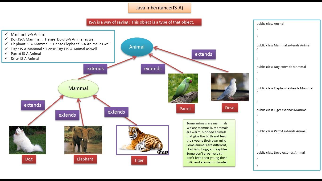 Java ee java tutorial inheritance is a relationship animal extends animaldemojava baditri Image collections