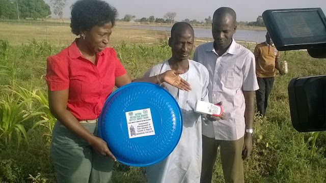 Nigerian scientists invent technology to end 'tomato ebola'