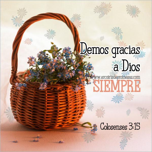 gracias por la vida mensajes cristianos con imágenes arcoiris de promesas