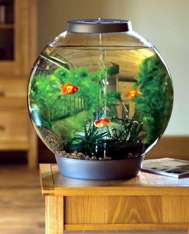 harga aquarium mini lengkap