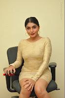 Actress Pooja Roshan Stills in Golden Short Dress at Box Movie Audio Launch  0056.JPG