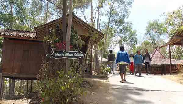 wisata alam kalibiru kulonprogo diy - jalan ke puncak