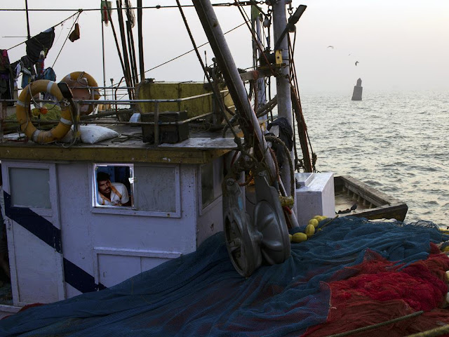 fisherman, boat, yearning, arabian sea, sassoon docks, mumbai, nets,