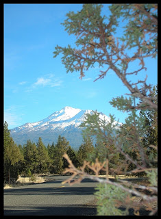 Siskiyou county camping for Lake siskiyou resort cabins