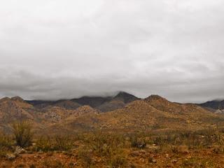 mountains in wilcox arizona
