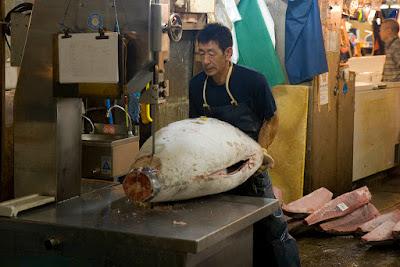 Yellowfin Tuna Kama Popular Asian Food Item