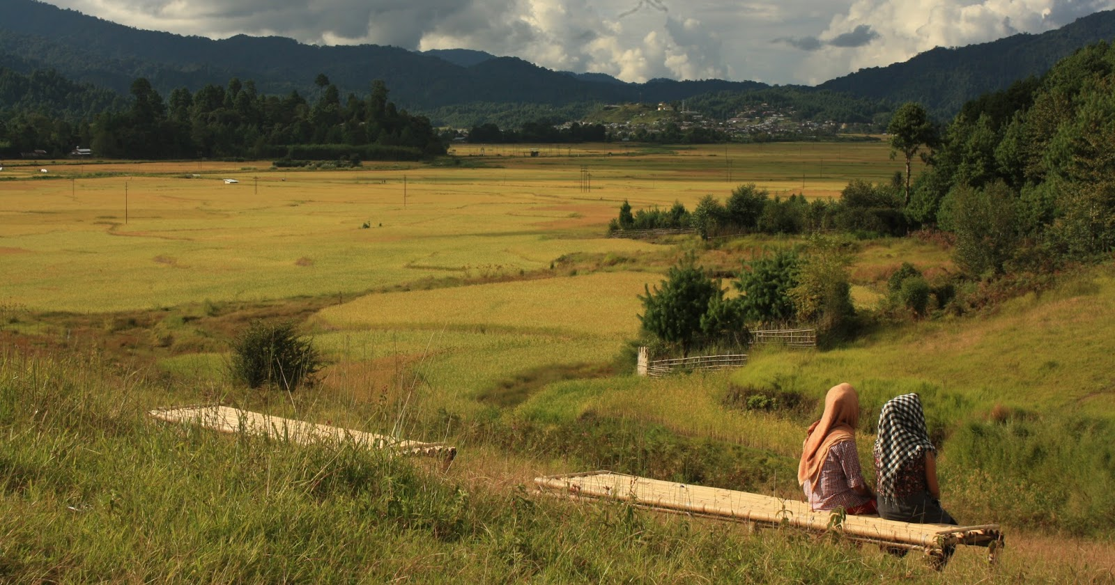 Ziro Valley - Arunachal Pradesh